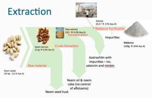 Neem Tree Extract
