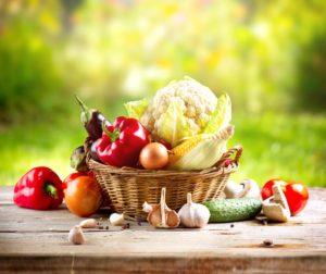 horticulture-glasshouse-vegetables